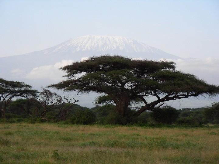 Kilimanjaro Kimana Game Sanctuary